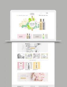 création de site internet site vitrine