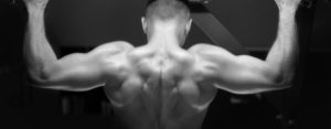 Protéines sport