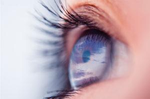 Santé oculaire
